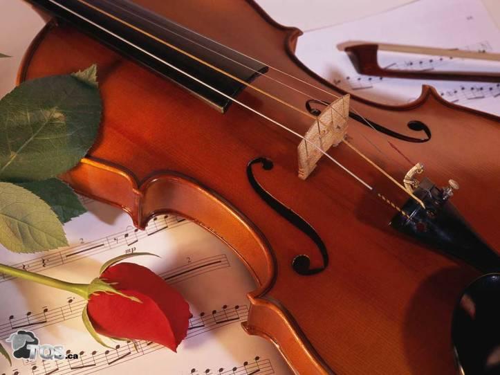 violon-idée-cadeau-musique-noel