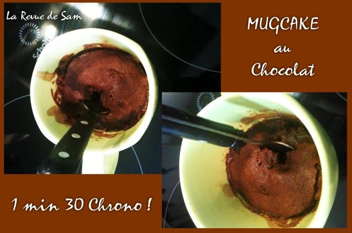 mugcake chocolat (1)