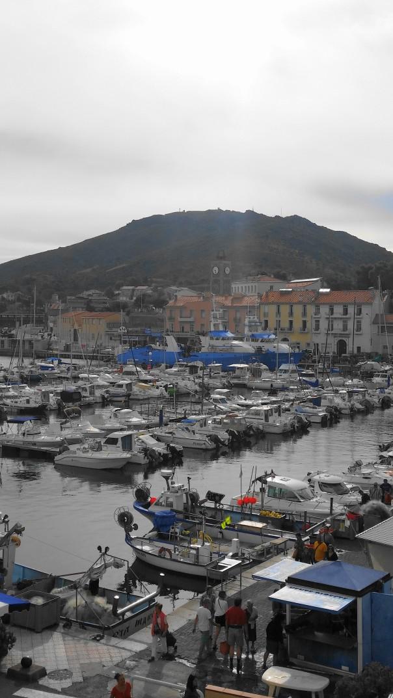 road-trip_port_vendres_sud_france-photos_larevuedesam_marché