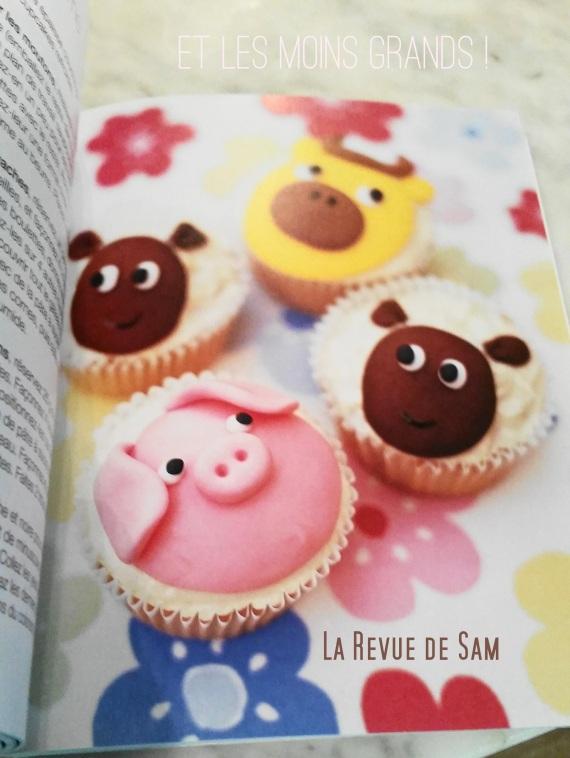 livre-recette-cupcakes-pâtisserie-concours