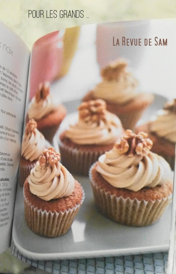 recette-cupcakes-livre-book-a-gagner-concours