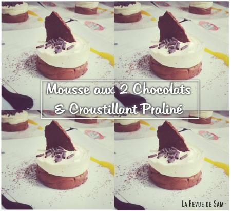 mousse-aux2chocolats-larevuedesam-entremet-chocolat-praliné